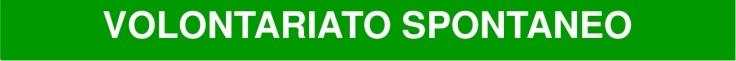 VOLONTARIATOSPONTANEO (2)